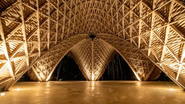 bambú zamá
