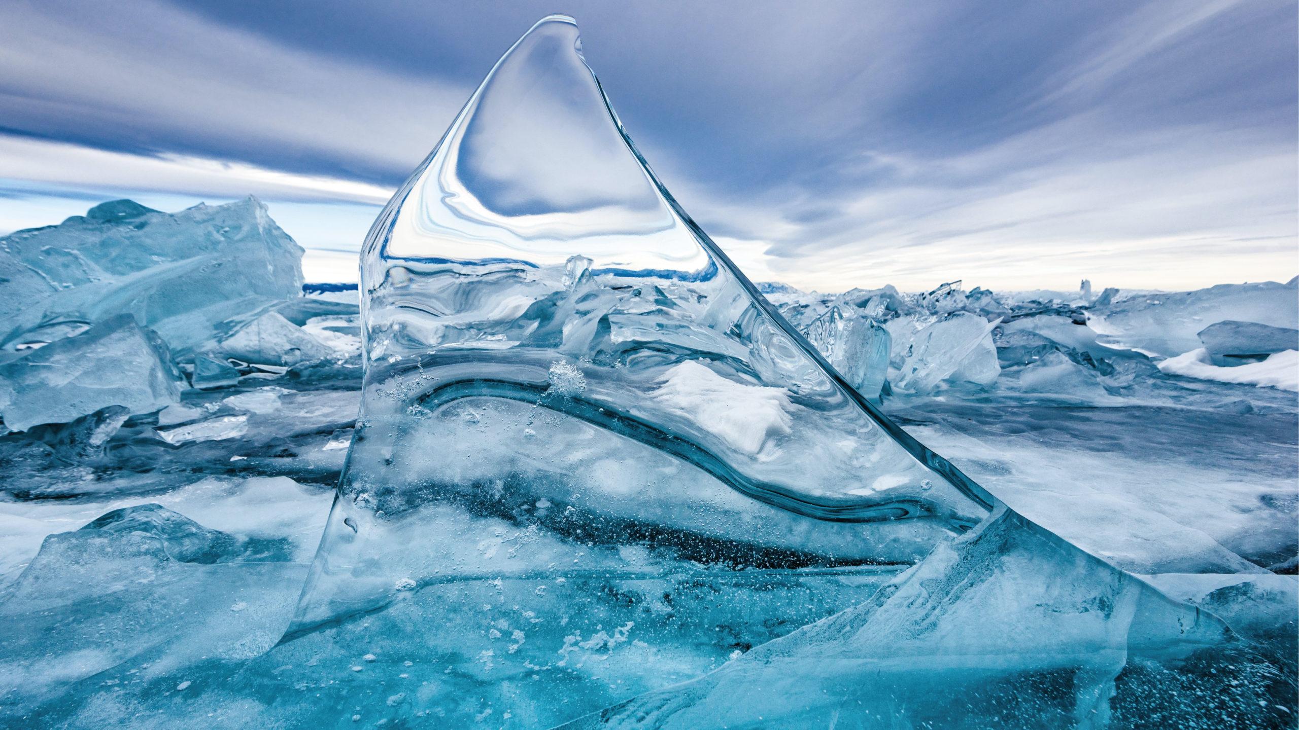 Sobrevive microorganismo que estuvo congelado 24,000 años en Siberia