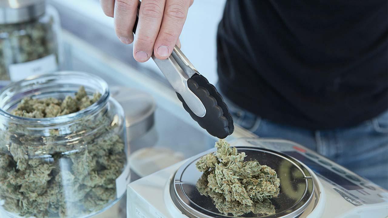 ¿Qué permite y qué prohibe el fallo de la SCJN sobre la mariguana?