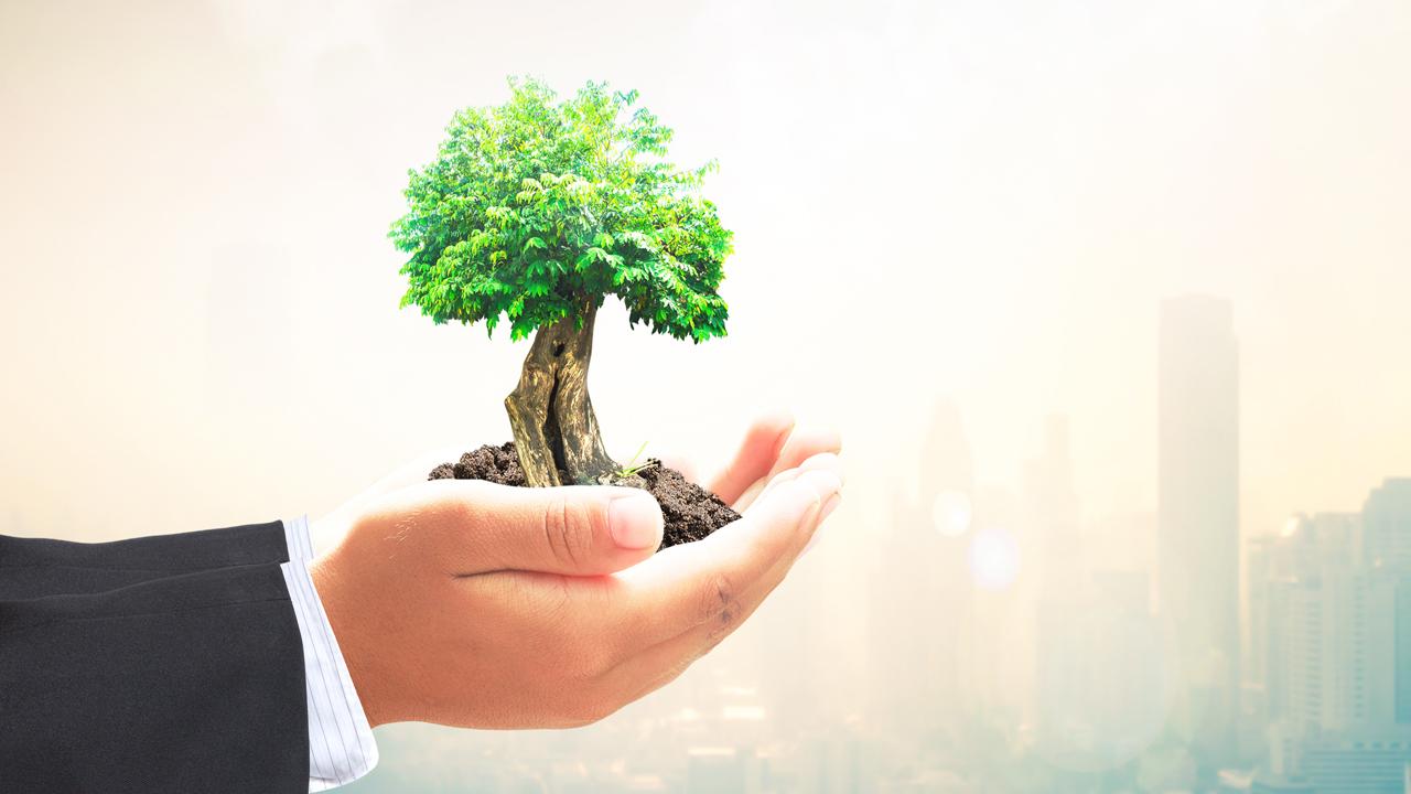 Ayudar al planeta es expandir tus horizontes de inversión