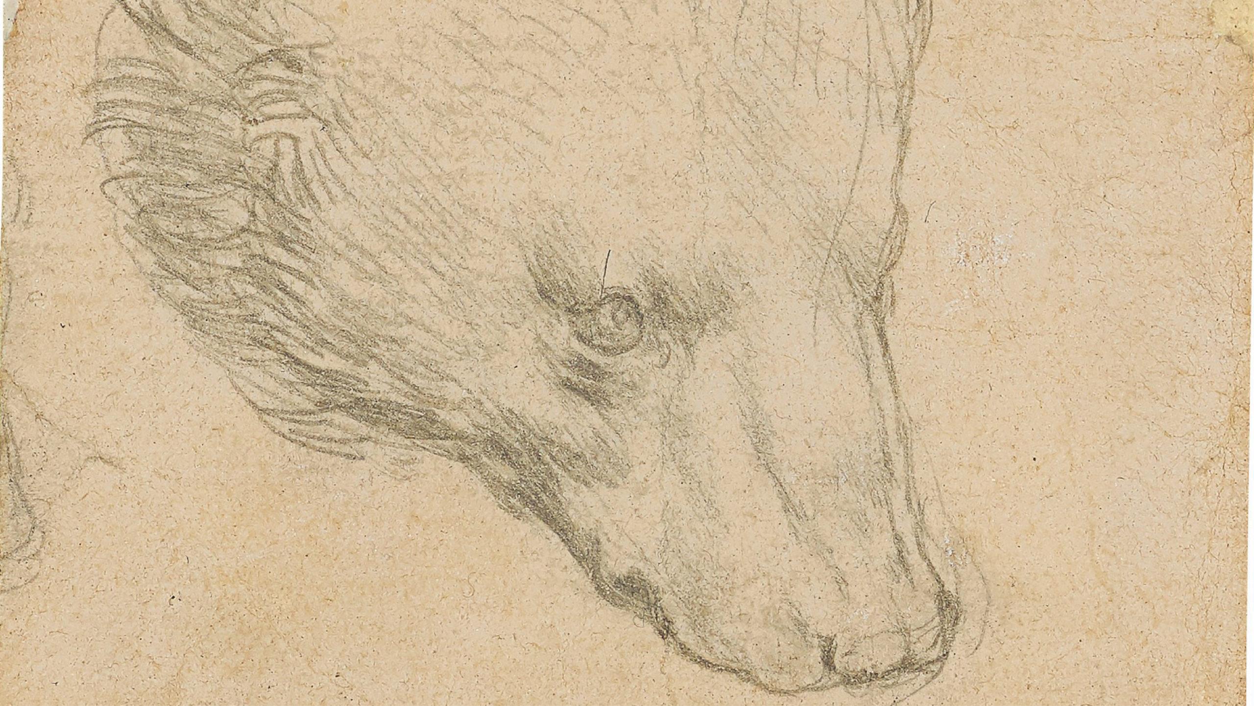 Subastan boceto de oso de Da Vinci por un récord de 12.2 mdd