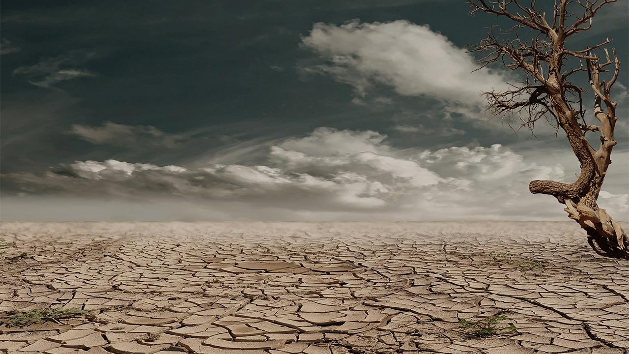 EU declara histórica escasez de agua en Lago Mead; habrá recortes