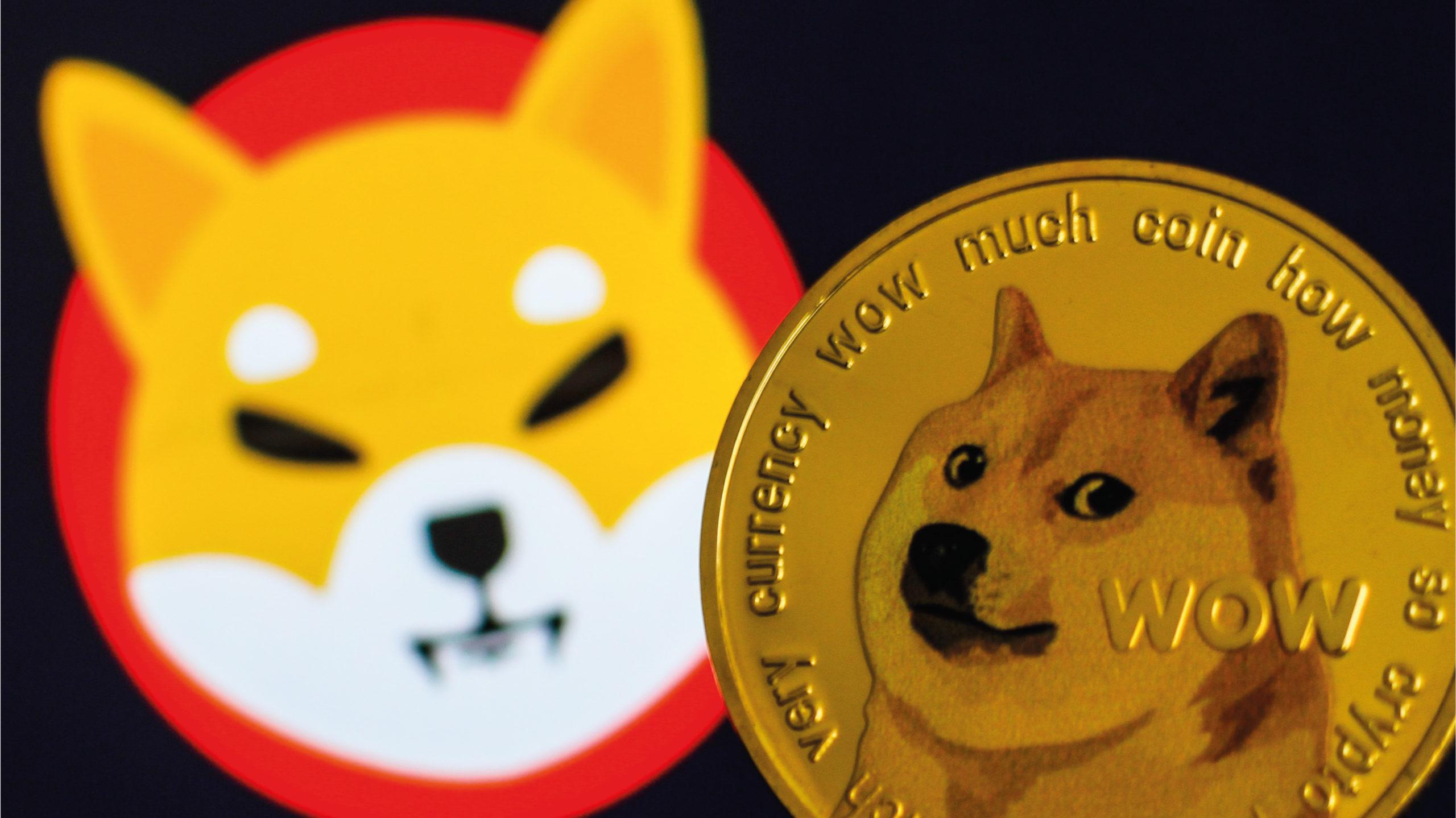 El token 'Shiba inu', avanza entre las 10 principales criptomonedas