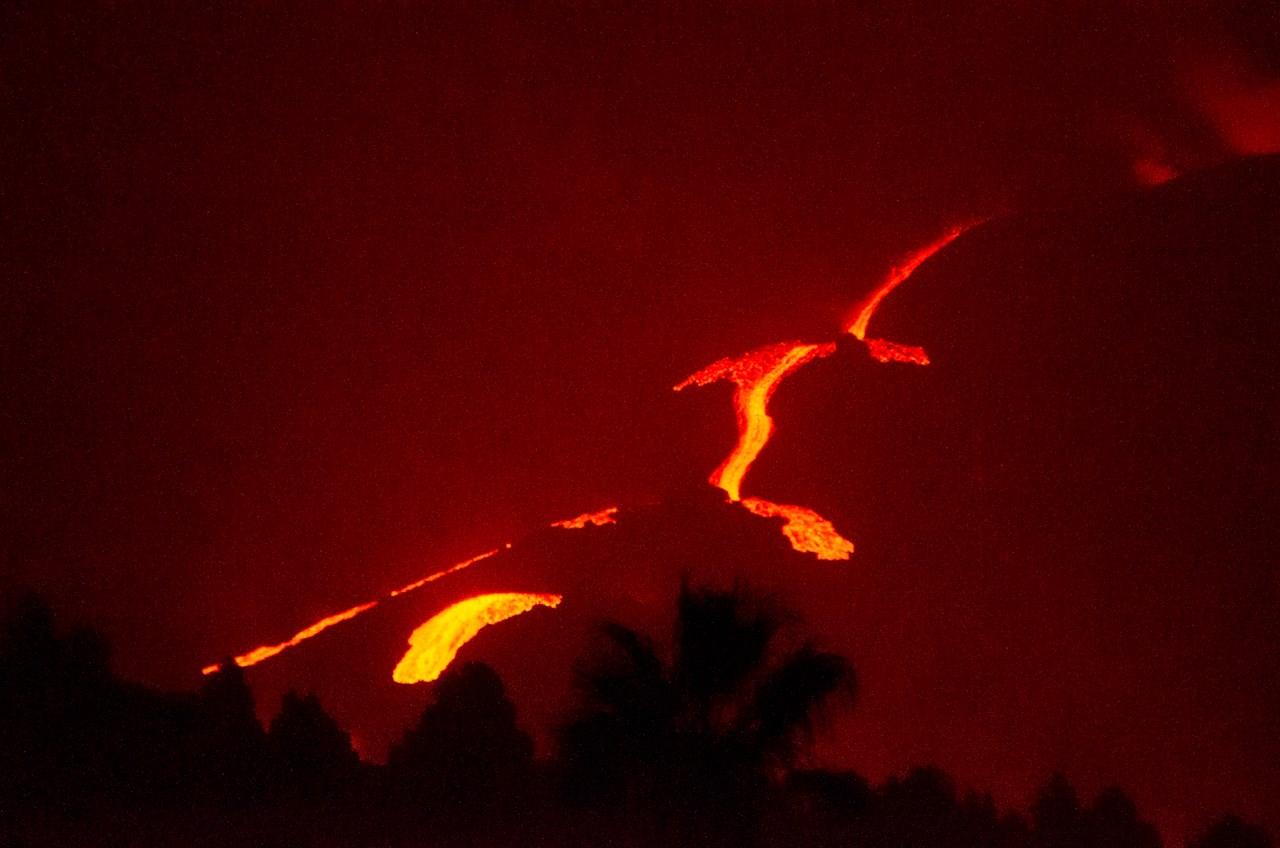 Tratarán de rescatar con drones a perros rodeados por lava en La Palma