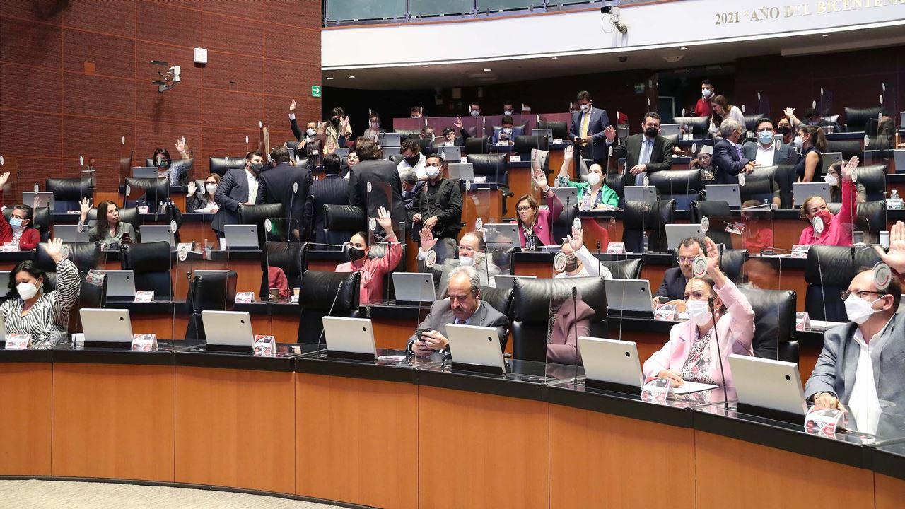 Senado pide a INE aceptar firmas en papel y app para revocación de mandato