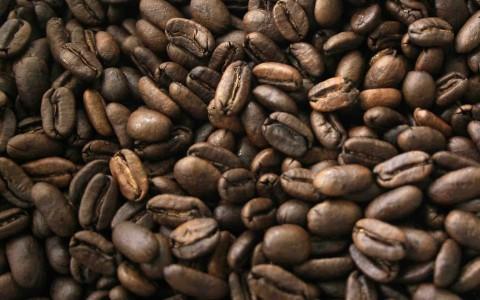 Empresarios taiwaneses tienen interés en café panameño