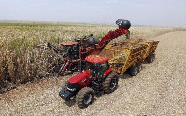 México y EU acuerdan negociaciones sobre exportaciones de azúcar