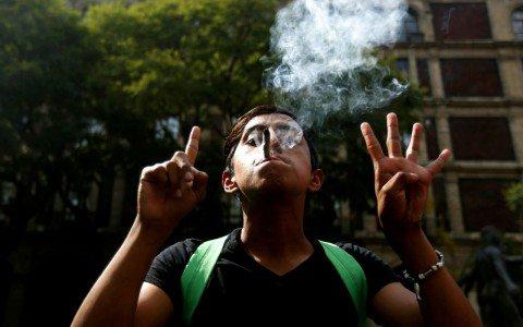 Marihuana: estrategia legal de unos, por el bien de todos